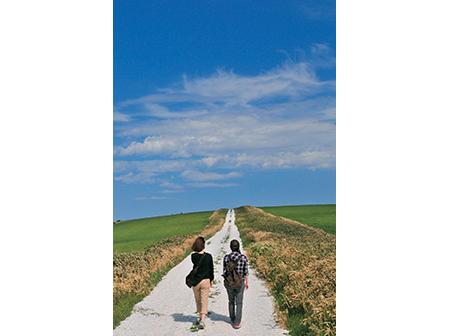 最北稚内フットパス(まち歩き、山歩きコース)