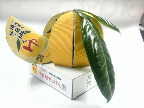 2011日本パッケージングコンテスト入選