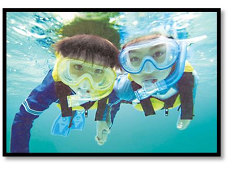 世界でも最大規模を誇るカラフル海中世界を満喫! シュノーケリング体験