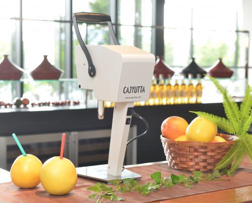 果汁搾り機「カジュッタ」
