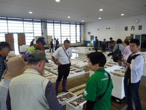 大人の学び旅 「大地の学校 糸魚川」 セリ見学とセリ魚堪能ツアー
