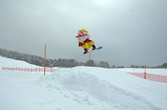 「雪」を地域資源とした観光コンテンツ開発による誘客増の調査研究