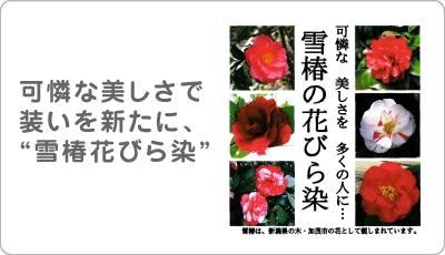 「雪椿の花びら染」特産品等開発並びに販路開拓事業