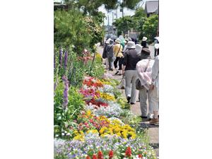 農作物の花が、街の華になる!